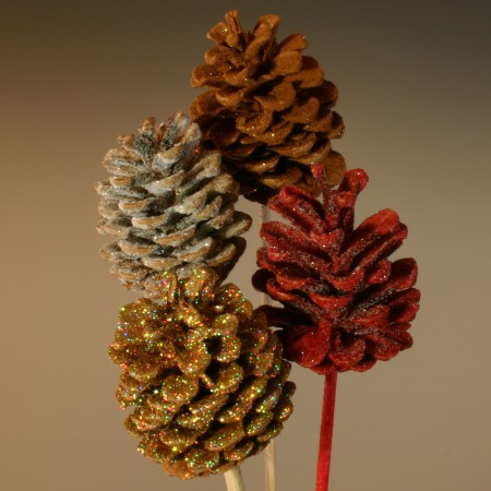 Pinecones frosted mixed
