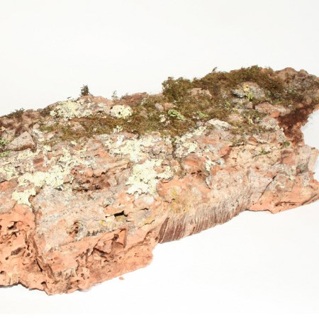 Cork Plate 'Natural' 100-150cm
